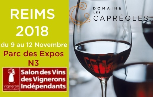 Salon VIF Reims 2018
