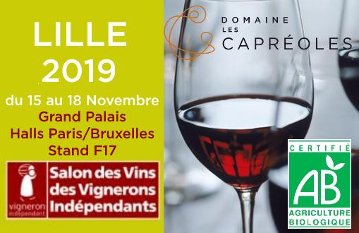 Salon VIF Lille 2019